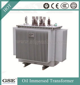 Distribution Transformers Oil Immersed Transformers/Ppower Transformer with TUV Standard pictures & photos