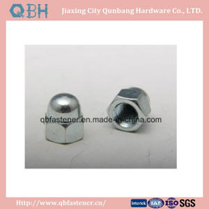 Metal Locked Hexagon Domed Cap Nuts (DIN 986) pictures & photos
