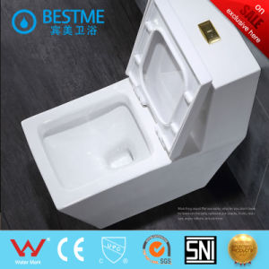One Piece Ceramic Washdown Wc Toilet pictures & photos