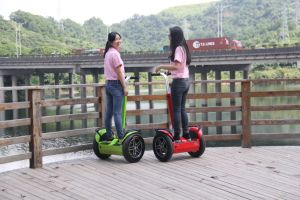 Wind Rover Long Mileage Cheap Two Wheel Smart Hoverboard pictures & photos