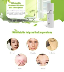 Battery Operated Mini Handheld Skin Humidifier Portable pictures & photos