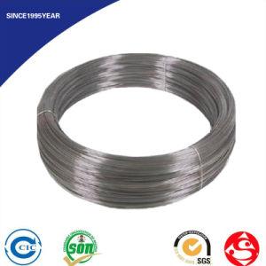 DIN 17223 En 10270 JIS G3521 Steel Wire 1 mm pictures & photos