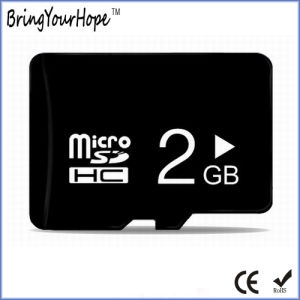 Real Full Capaciy 2GB High Speed C10 Micro SD Card (TF 2GB) pictures & photos