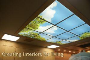 Super Slim LED Sence & Picture Panel Light 36W Cool Light pictures & photos