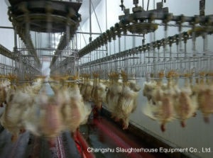 Slaughtering Line --Chicken, Duck, Goose pictures & photos