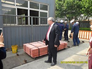 Grade a Copper Cathodes for Sale From China pictures & photos