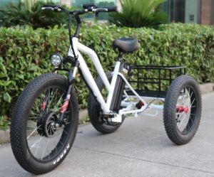 48V 500W Front Motor Electric Tricycle pictures & photos