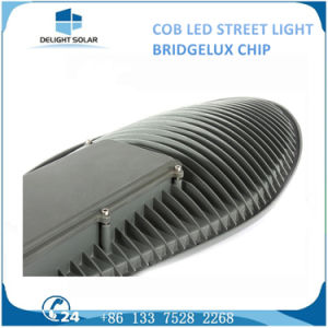 30W/50W COB Chip Light Outdoor Pathway/Roadway Solar LED Street Lamp pictures & photos