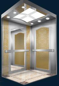 Steel Shaft Finished Home Villa Elevator pictures & photos