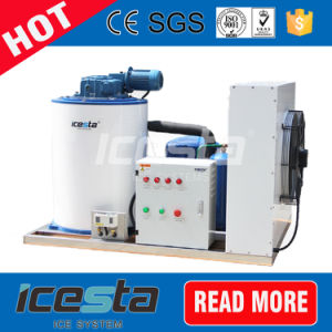 Ice Flake Machine for Singapore From 1ton to 60tons pictures & photos