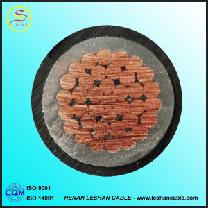 XLPE / PVC Insulated Power Cable for Substaion or Power Plant pictures & photos