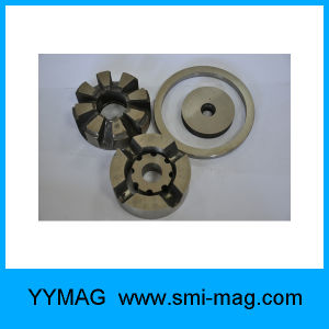 Rotor Magnet AlNiCo pictures & photos