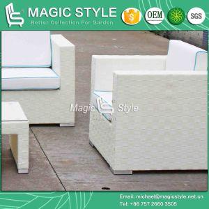 Rattan Sofa Combination Sofa Set Outdoor Furniture Sofa Set Patio Sofa Garden Sofa Leisure Sofa pictures & photos