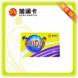 PVC Printing Chip Card Upon Request (SL-5107) pictures & photos