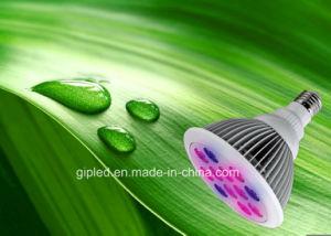 Top Ten Seller 12W E27 LED Grow Light pictures & photos