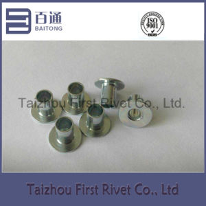 6.25X9mm White Zinc Color Flat Head Fully Tubular Steel Rivet