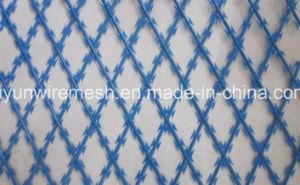 Concertina Razor Wire/Galvanized Concertina Razor Wire/Hight Security Razor Barbed Wire pictures & photos