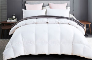 Professional Supplying Down Feather Comforter Duvet Quilts