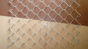 PVC Coated Chain Link Fence / Security Fencing / Safety Netting Hot Sale pictures & photos