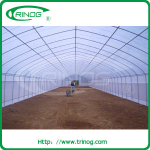 Vegetables Tunnel Film Greenhouse for commercial pictures & photos