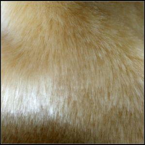 Artificial Fur pictures & photos