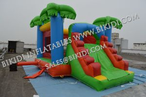 Custom Made Module Inflatable Combo, Wet or Dry Inflatable Bouncer, Jungle Slide B3093 pictures & photos