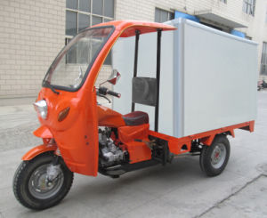 Three Wheeler Cargo Van Cabin Van Cargo Tricycle with Cooling Box pictures & photos
