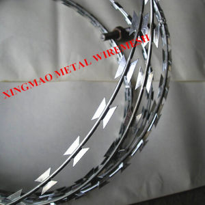 Hot-DIP Galvanized Razor Barbed Wire/Razor Blade Wiremesh (XM-R1) pictures & photos
