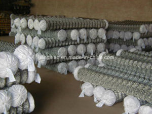4 Inch Security Chain Link Fence Made in Chinahpzs6007) pictures & photos