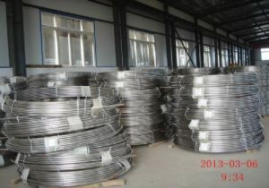 ASTM 321 Stainless Steel Continuity Oil Tube pictures & photos