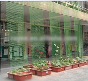 100% HDPE Anti Hail Net From China Factory pictures & photos
