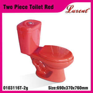 Earthware Top Button Dual Button Standing Jet System Two Piece Water Closet