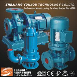 Vertical Piping Centrifugal Pump/Vertical Turbine Centrifugal Pump/Pipe Mounted Pump pictures & photos