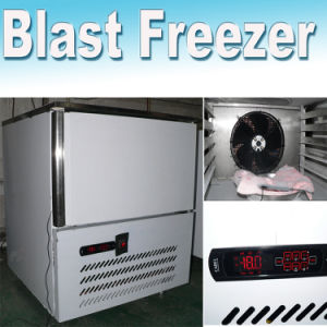 Small Blast Freezer for 12 Kg Food Freezing pictures & photos