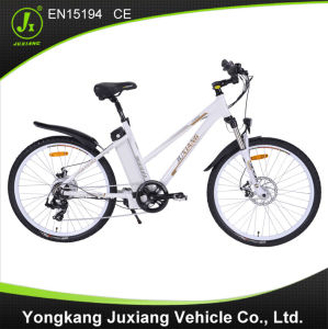 Caliente Venta De Bicicleta Electrica Con En15194 pictures & photos