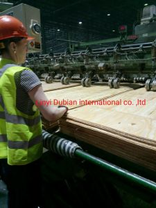 Visit Our Pine Plywood Buyer From Russia pictures & photos