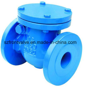 Cast Iron BS5163 Flanged Swing Check Valve pictures & photos