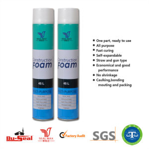 750ml Insulation Aerosol Spray PU Foam