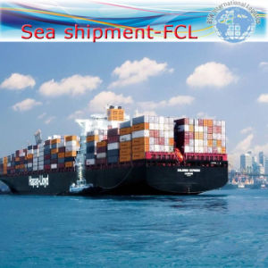 Ocean Shipment From China to Argentina, Brazil, Colombia, Chile pictures & photos