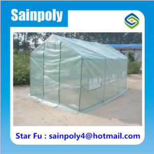 Agricultural Used Garden Greenhouse for Planting Vegetable pictures & photos