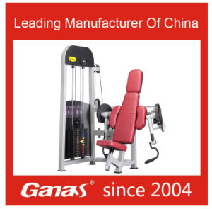 Seated Biceps Curl Machine Fitness Equipment