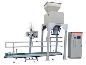Granule Packing Machine/Powder Packing Machine (Stainless Steel 304)