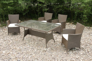 Modern Outdoor Patio Garden Conservatory Rattan Furniture Set (FS-2068+FS-2069) pictures & photos
