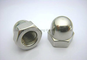 DIN1587 Hexagon Domed Cap Nuts S. S. pictures & photos