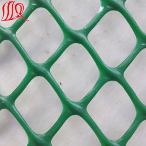 High Quality HDPE Geonet Plastic Net pictures & photos