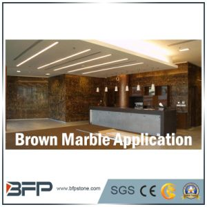 Marble Brown Wall Tile for Projects Use with Polished Surface pictures & photos