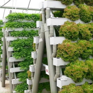 Vegetable Greenhouse Hydroponics Tower pictures & photos