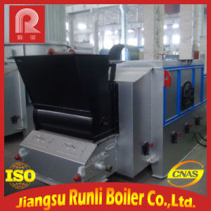 Horizontal Chain Grate Thermal Oil Heater pictures & photos