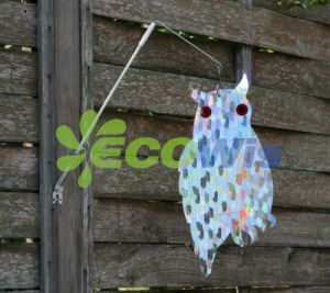 Holographic Guardian Owl China Manufacturer Supplier pictures & photos