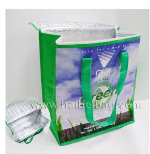 Customized Non Woven Picnic Lunch Cooler Bag for Food, Drink, Beer Can, Ice Cooling, Shopping Box, Promotion (HBCOO-5) pictures & photos
